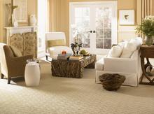 carpet sales, carpet installation, new pad installation, mobile showroom
